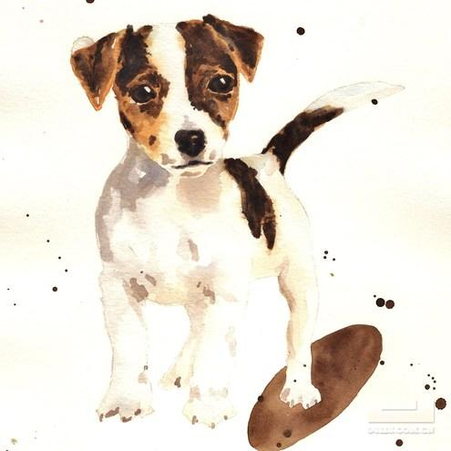 绘学习 | 用水彩画出的动物也是一绝!